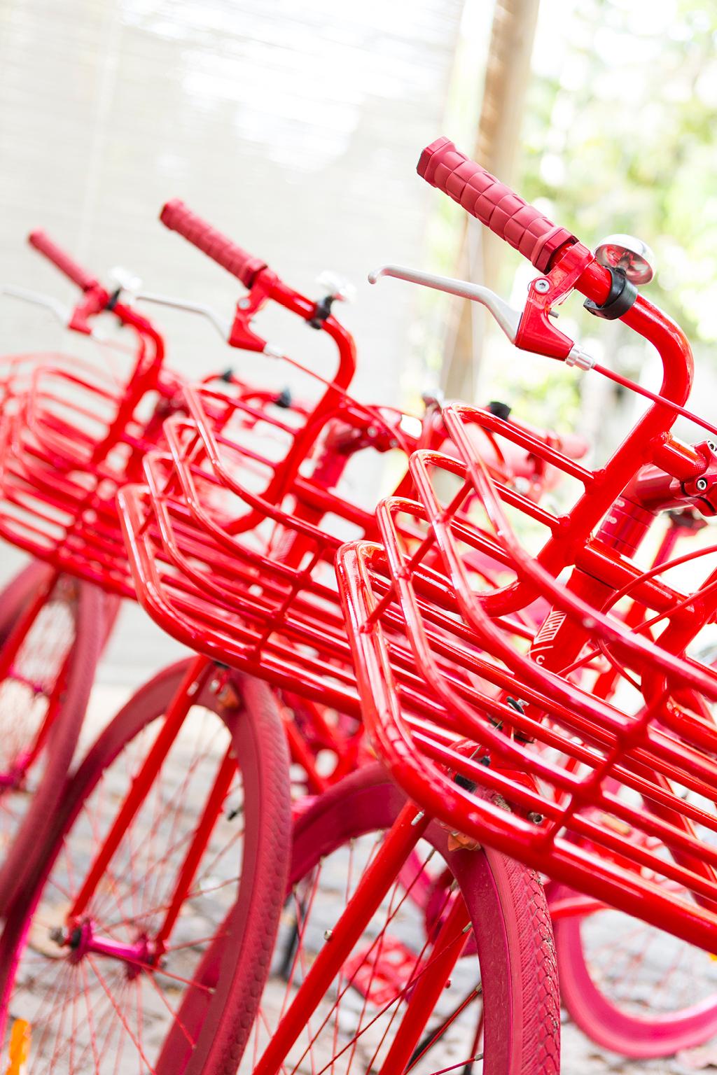 自行车自由行